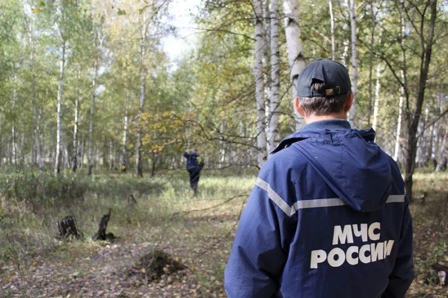 Навыходных вОрловской области заблудились шесть грибников