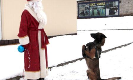 полицейский пес