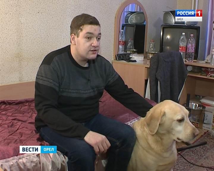 собака-поводырь
