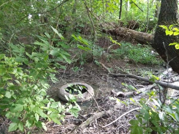 канализация, Орлик