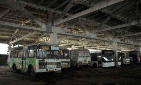 автобусы, патп