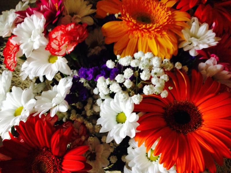 цветы, поздравление