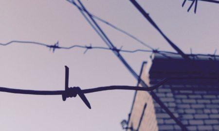 проволока, тюрьма, зона, колония, заключение, лишение свободы