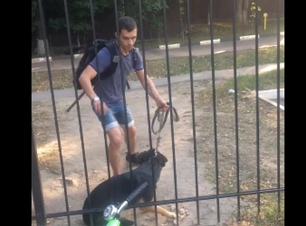 собака, садист
