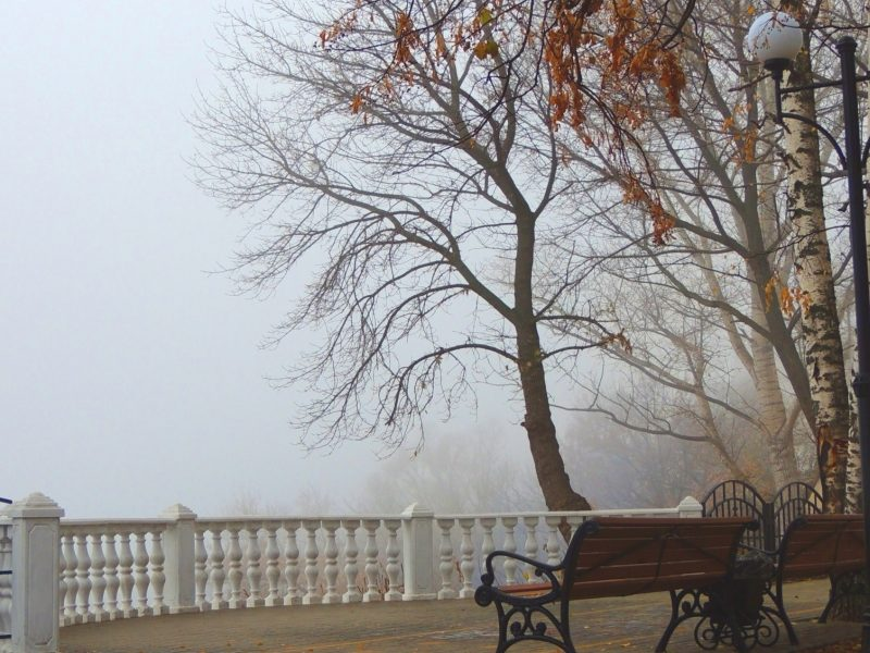 туман, осень, погода
