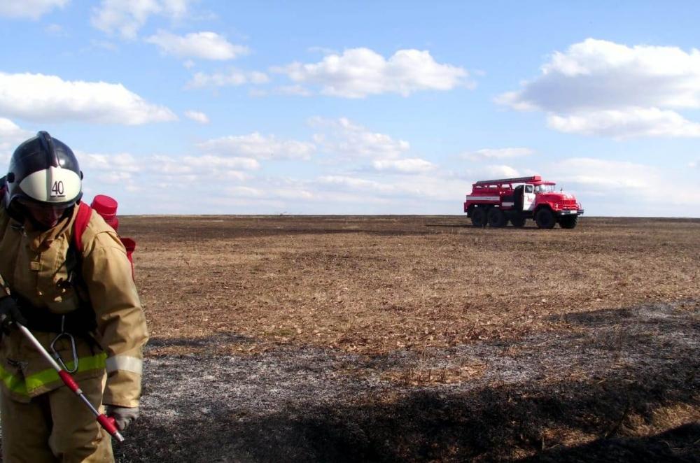 пожар трава