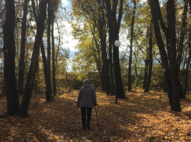 осень, старость, пенсионер, население, пенсия