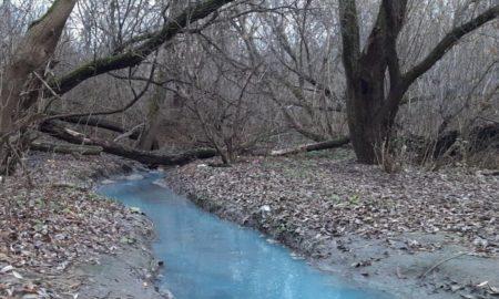 синяя Ока