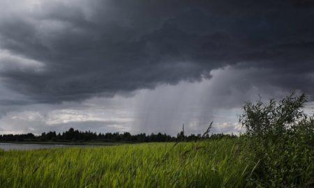дождь, гроза, погода