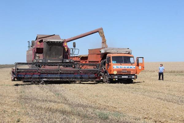 трактор поле