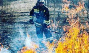 лесной пожар, правяной пал