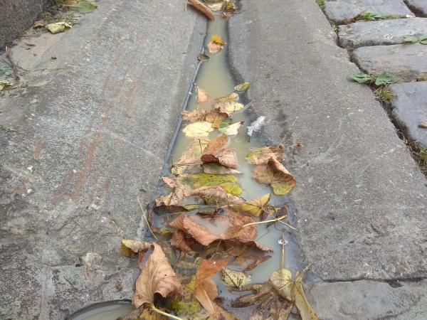 ливневка, канализация, ленина