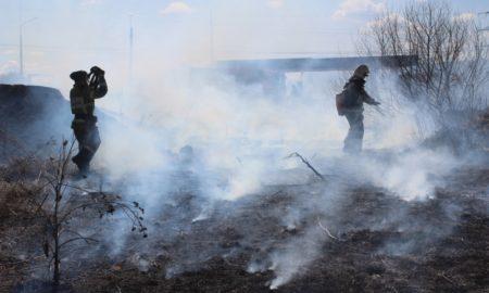 пал, горит трава, пожарные