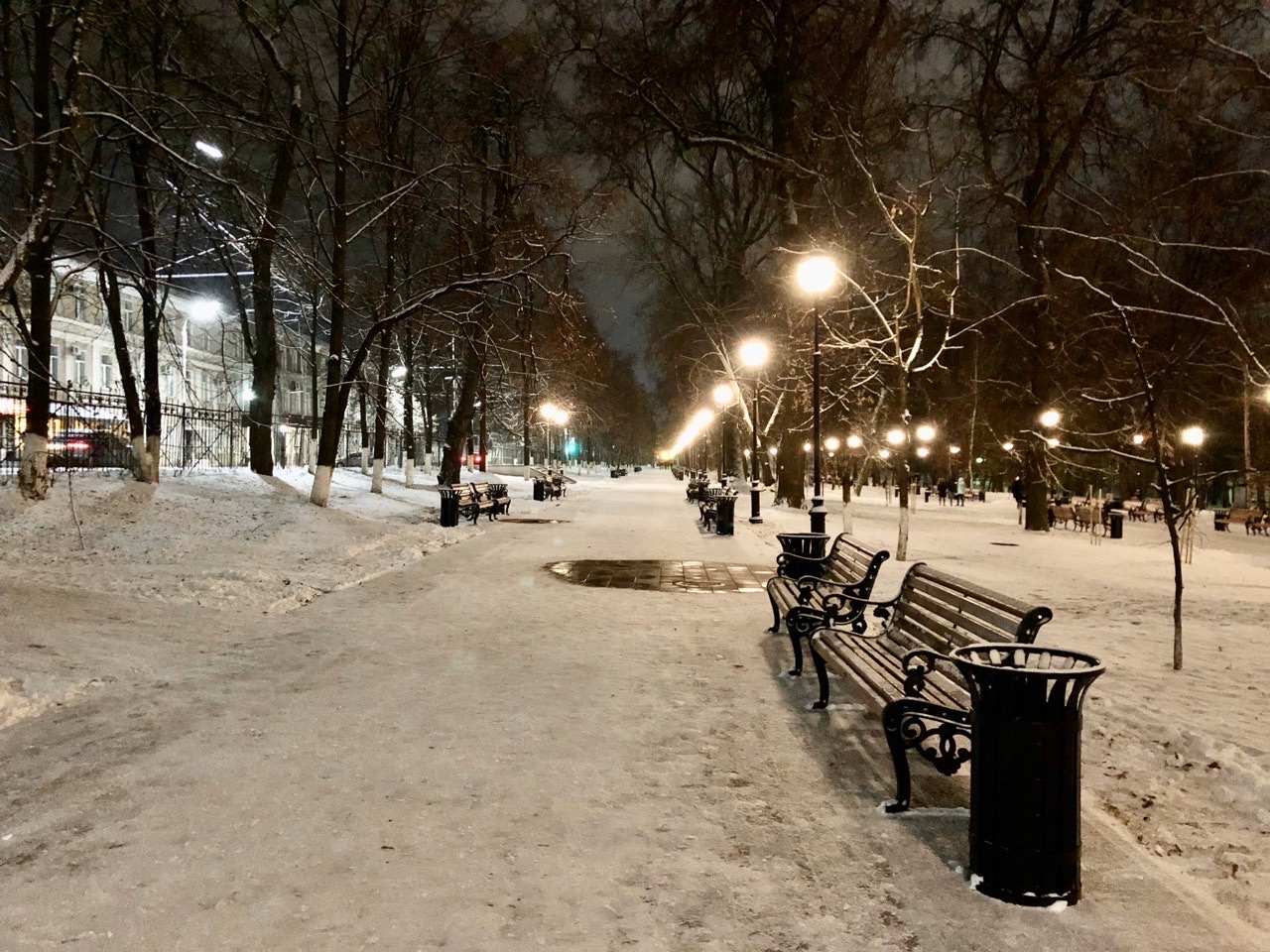 парк, зима