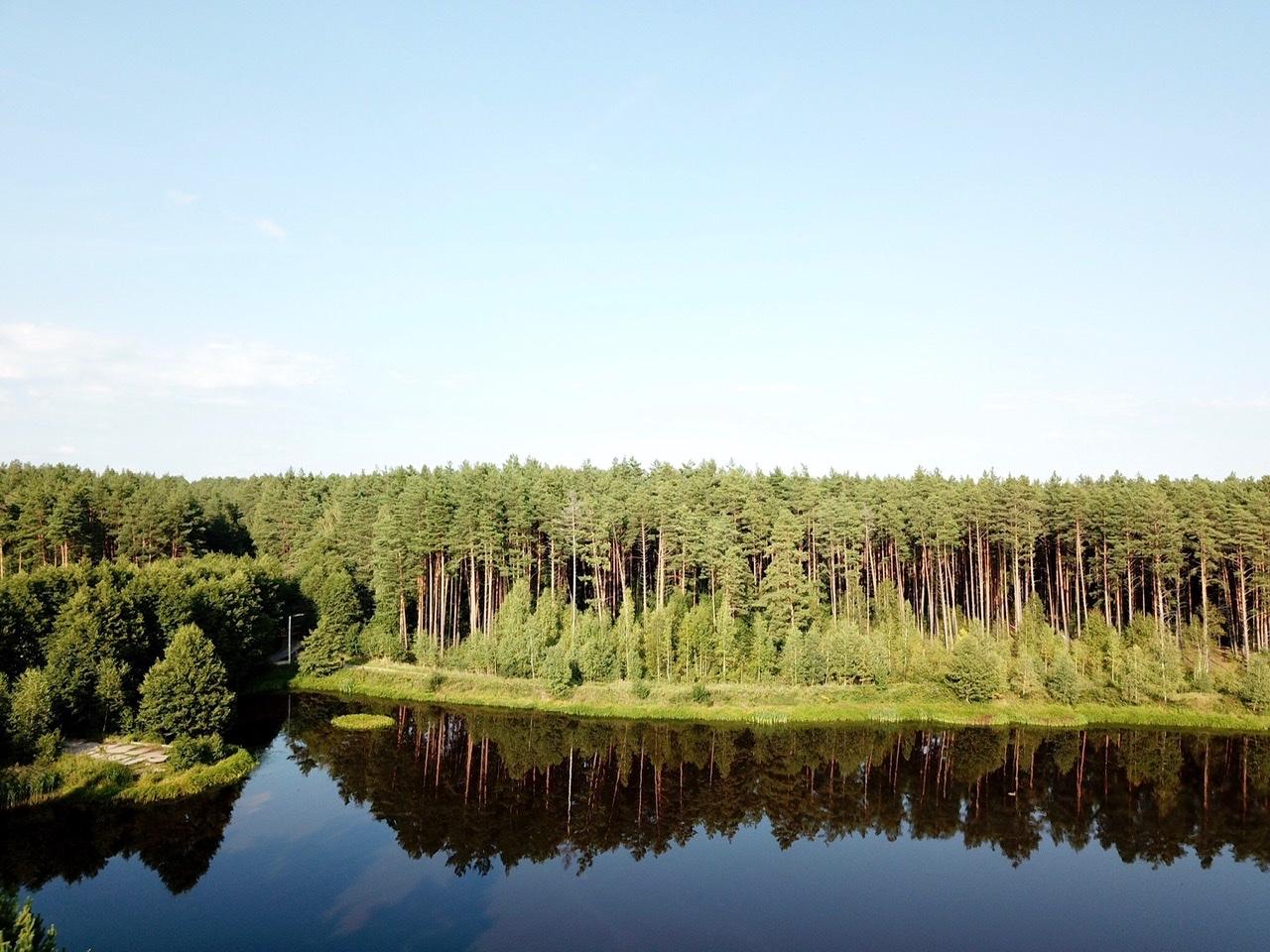 озеро, природа, лето, пруд, рыбалка, лес, сосны
