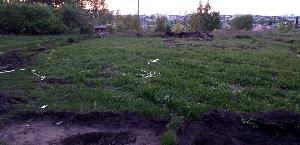allea-shuruev